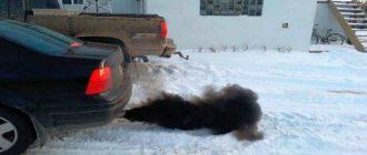 Почему идет черный дым из выхлопной трубы: на больших оборотах, при запуске, на холодную
