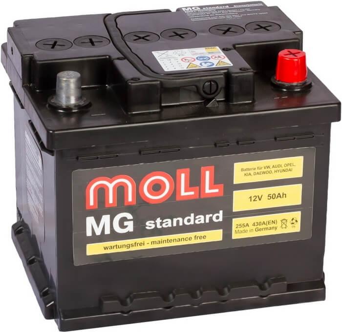 Moll MG Standart